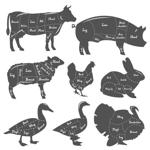 Vintage diagram of meal cutting of animals